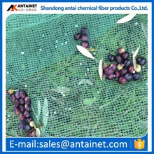 OLIVES AND FRUIT GREEN CHINA HDPE HARVESTING NETS