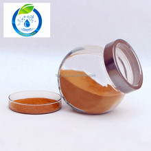 Best Selling Tea polyphenols 98% Green Tea Extract