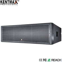 Factory Linear Array 500 Watt Professional Speaker