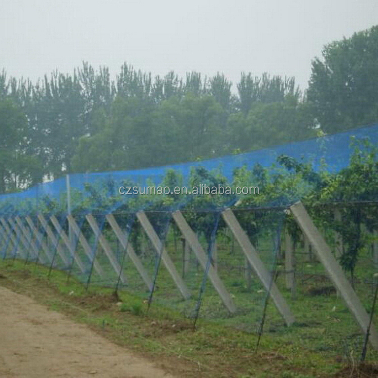 New style most popular pond cover anti bird pe netting