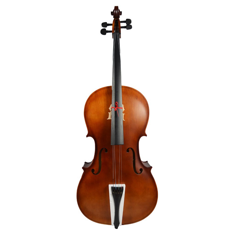 Beautiful handmade professional cello for sale