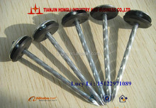 15 degree galvanized umbrella head roofing nail with rubber washer