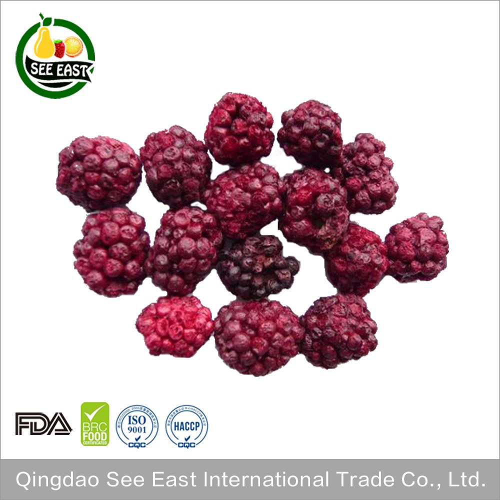 chinese wholesale suppliers food and beverage freeze dried blackberries