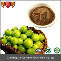 Best Selling high quality Fruit Extract Emblic Extract Powder