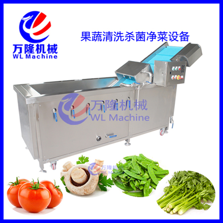 hot-selling many kinds of vegetable washing machine commercial fruit washer