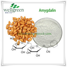Free Sample!natural Amygdalin 98%,Vitamin B17,Laetrile,Cas No. 29883-15-6