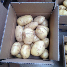 100% pure chinese potatoes in carton