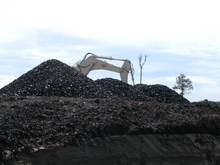 East Kalimantan Coal