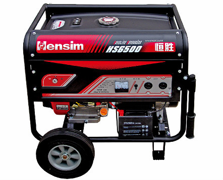 Portable Power Gasoline Generator
