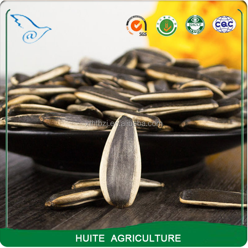 Dried sunflower seeds for sale