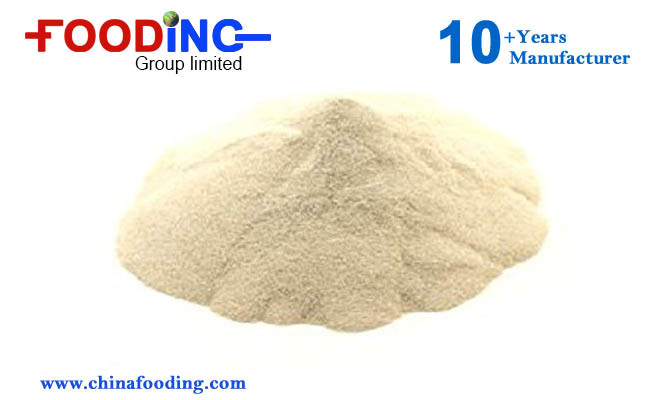 High Purity Thickener Sodium Alginate