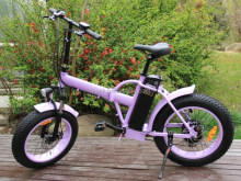 new cheap 20 inch folding electric bike bisek cycle