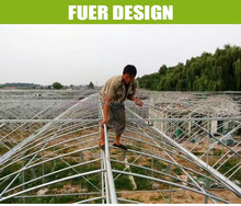 High Quality greenhouses for mushroom