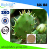 Weight loss Cactus Extract