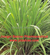 100% pure Natural food grade lemongrass essential oil price