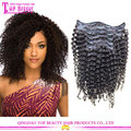 Supplier Best Selling Brazilian Remy Human Kinky Curly Clip In Hair Extension For Black Women