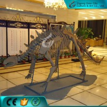 Fiberglass Made Artificial Dinosaur Skeleton Model