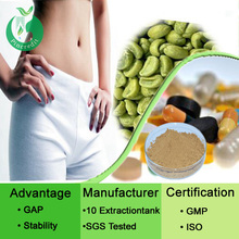 green coffee/bulk green coffee beans extract