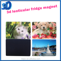 new 3d lenticular fridge magnet of flower for promotional gift