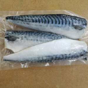 Good Price Frozen Atlantic Mackerel Fillet in Mackerel