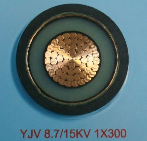 MV single core STW armoured power cable