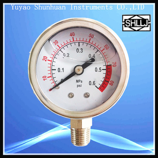 LZY Liquid filled pressure gauge