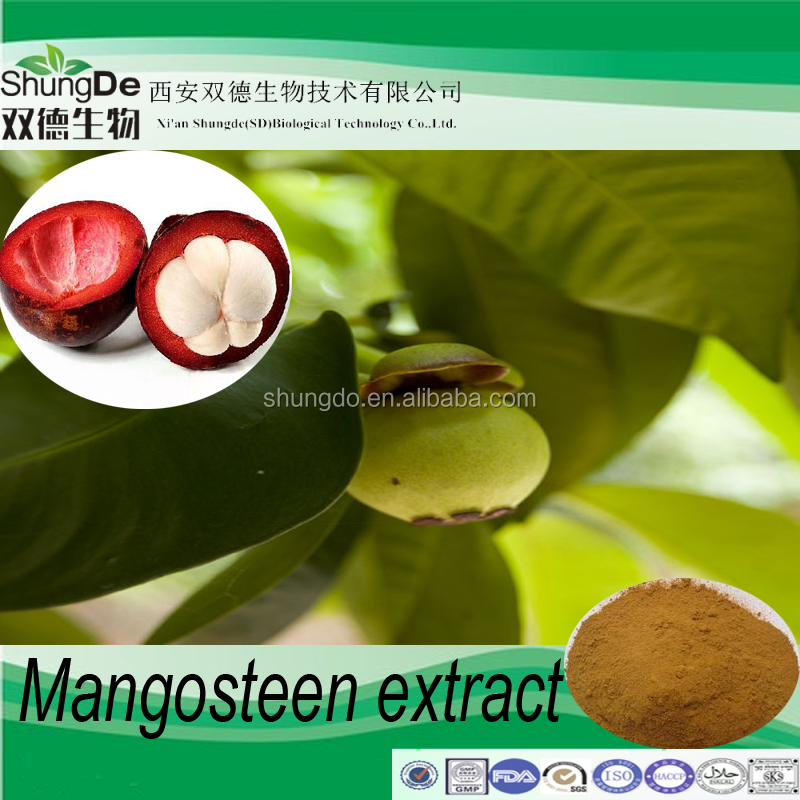 Factory Supply Mangosteen Extract of Mangostin powder/ Xanthones /Polyphenol