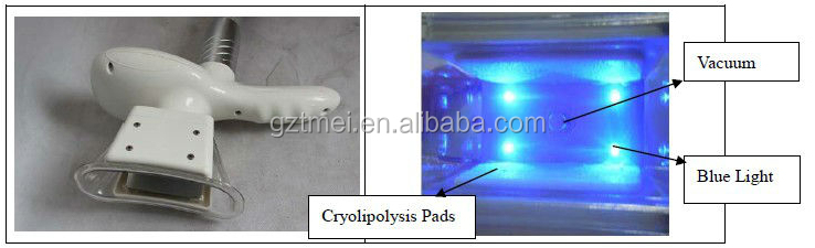 New Two handle cryo vertical cryolipolysis cavitation rf device