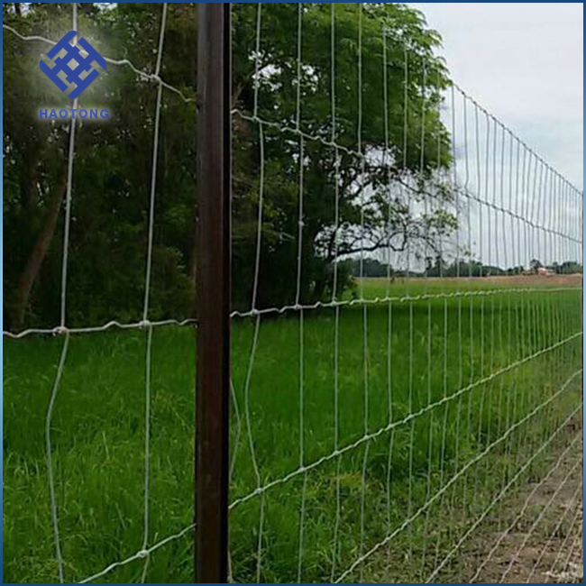 Hot sales high tensile galvanized cattle mesh fence/filed fence /farm woven wire netting