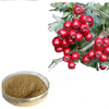Factory Supply Pure Hawthorn Fruit Extract