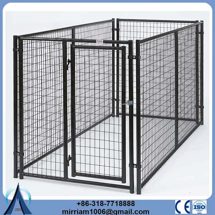 Chain Link or galvanized comfortable lucky dog kennels