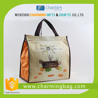 Food-grade Cooler Bag with Customized Shape