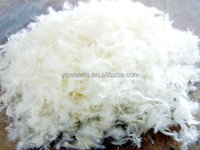 Fresh washed white natural duck feather for sale cheap
