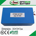 24v 10ah lifepo battery for electric bike