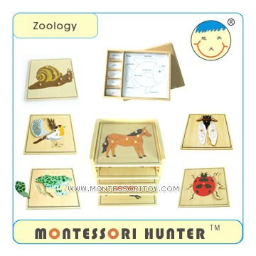 Montessori Toys Infant and toddler Series