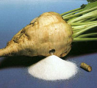 Icumsa 45 BEET SUGAR (45 RBU ATTENTUATION)