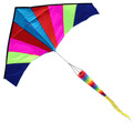 Rainbow delta Kite for child and adult