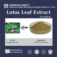 Natural plant extract Nelumbo Flavone Nelumbo Alkaloids 2- 5% Lotus Leaf Extract Powder