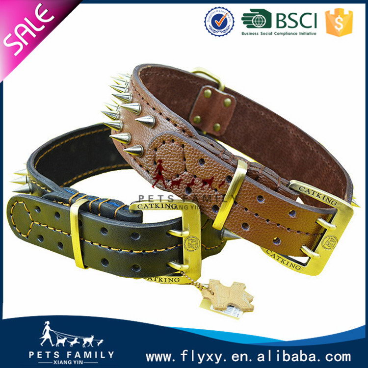 Fashionable Cheapest locking dog collar