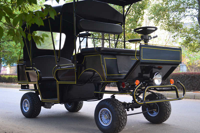 Black electric personal transport vehicle/wagon