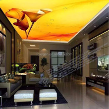 materials used for false ceiling cheap building ceiling materials