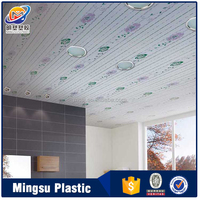 Top Consumable Products Newly Designed Pvc
