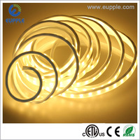 free sample strip led 5050,ws2801 led strip,ws2812 led strip