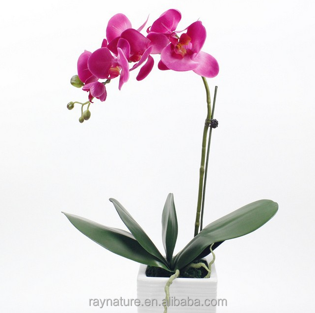 Hot sale Factory direct handmade singapore orchid flower
