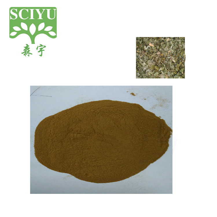 100% Natural Moringa Leaf Powder 5:1 10:1 20:1