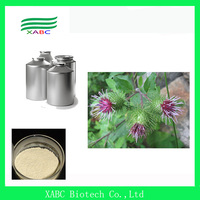 High Quality Burdock Root Extract,Arctiin 5:1