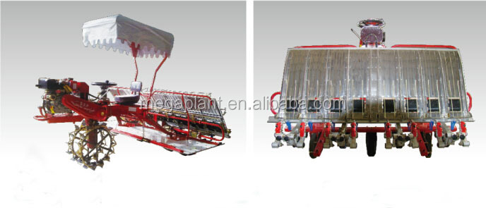 walking rice transplanter