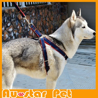 Wholesale Size XS High Quality Jean Dog Leashes