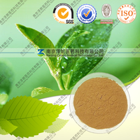 Factory Supply 100% Water Soluble Instant Black Tea Powder