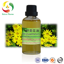 High quality natural wild chrysanthemum oil